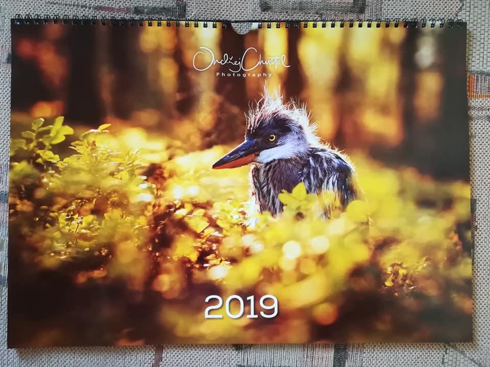 kalendář, kalendar, kalendáře, kalendare, tisk kalendářů, tisk kalendaru, vlastní kalendář, vlastni kalendar, tisk vlastního kalendáře, tisk vlastniho kalendare, kalendář z fotek, kalendar z fotek, kalendář z vlastních fotek, kalendar z vlastnich fotek, kalendář z vlastních fotografií, kalendar z vlastnich fotografii
