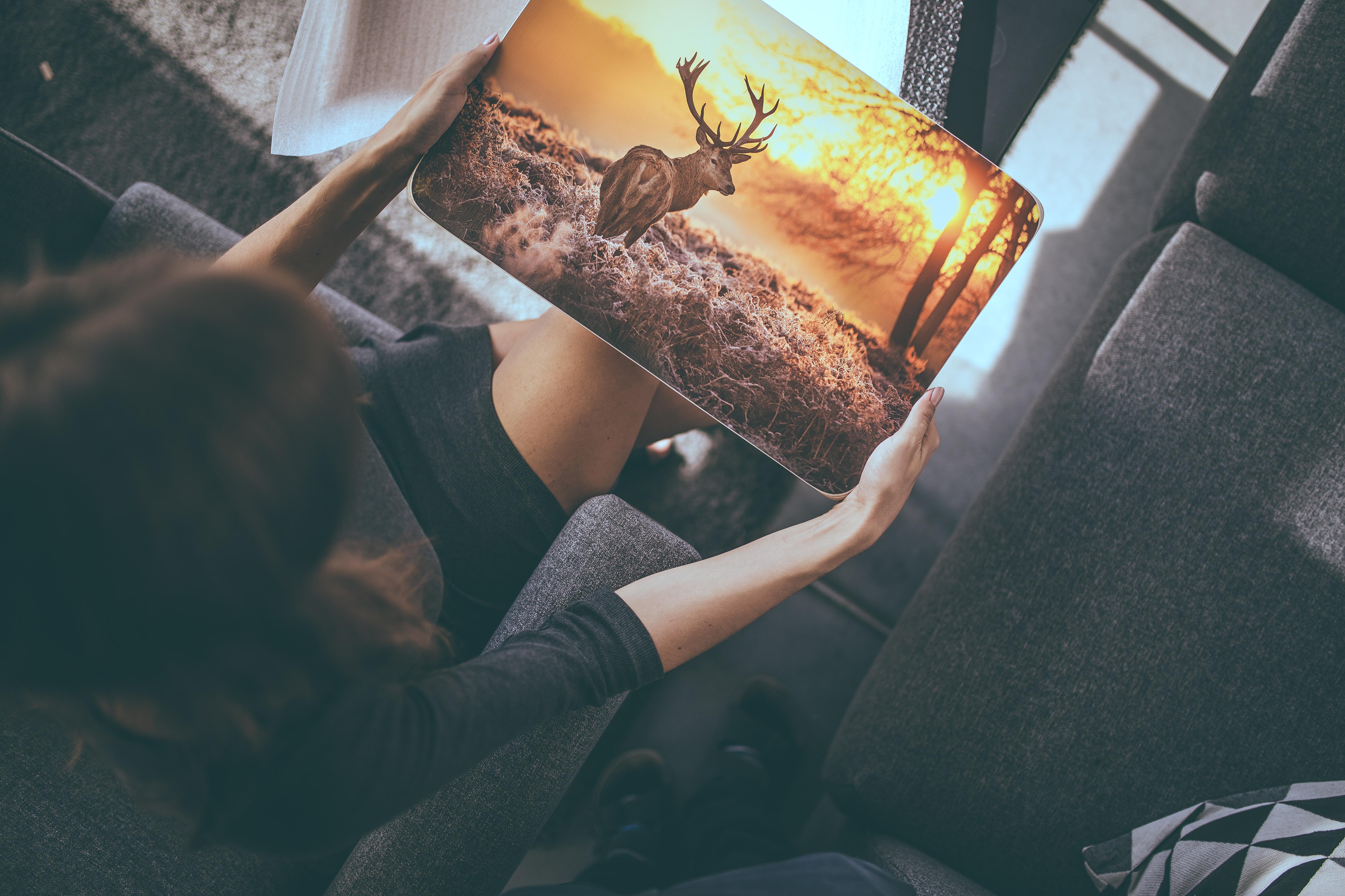 obraz na dřeve, obraz na dreve, tisk na dřevo, tisk na drevo, fotka na dřevě, fotka na dreve, foto na dřeve, foto na dreve